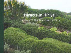 Miracle in Hirija