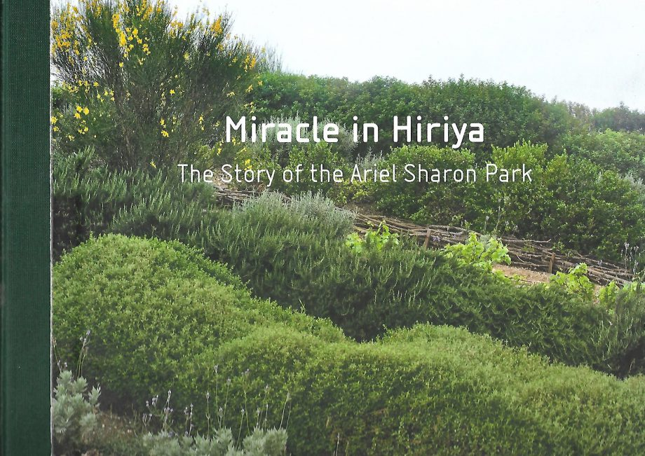 | Mircacle in Hiriya | Bauhaus Center Tel Aviv